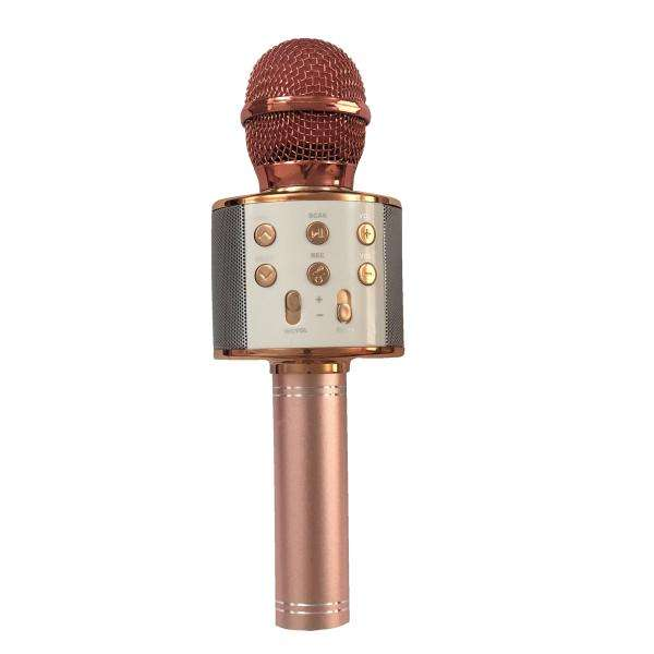 میکروفون اسپیکر